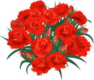 carnation06-003.jpg